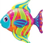 Q16448-43 in color fish